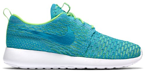 Кроссовки NIKE WMNS ROSHE ONE FLYKNIT
