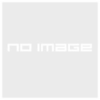Футболка F CLASSIC TEE medium grey heather